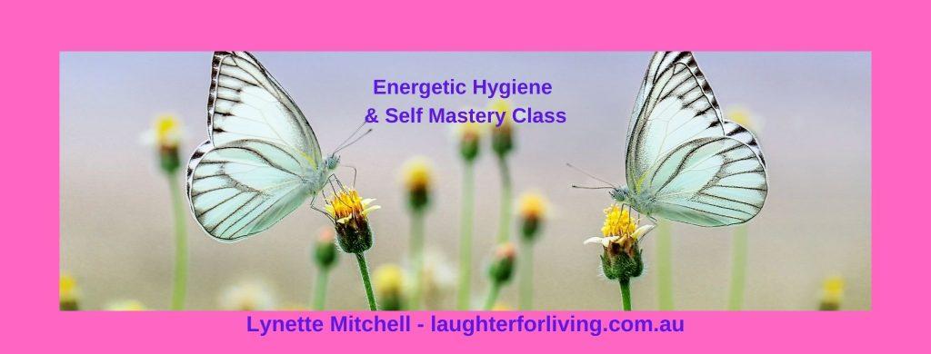 EH & SM Class butterflies