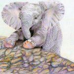 Pencil Elephant Drawing
